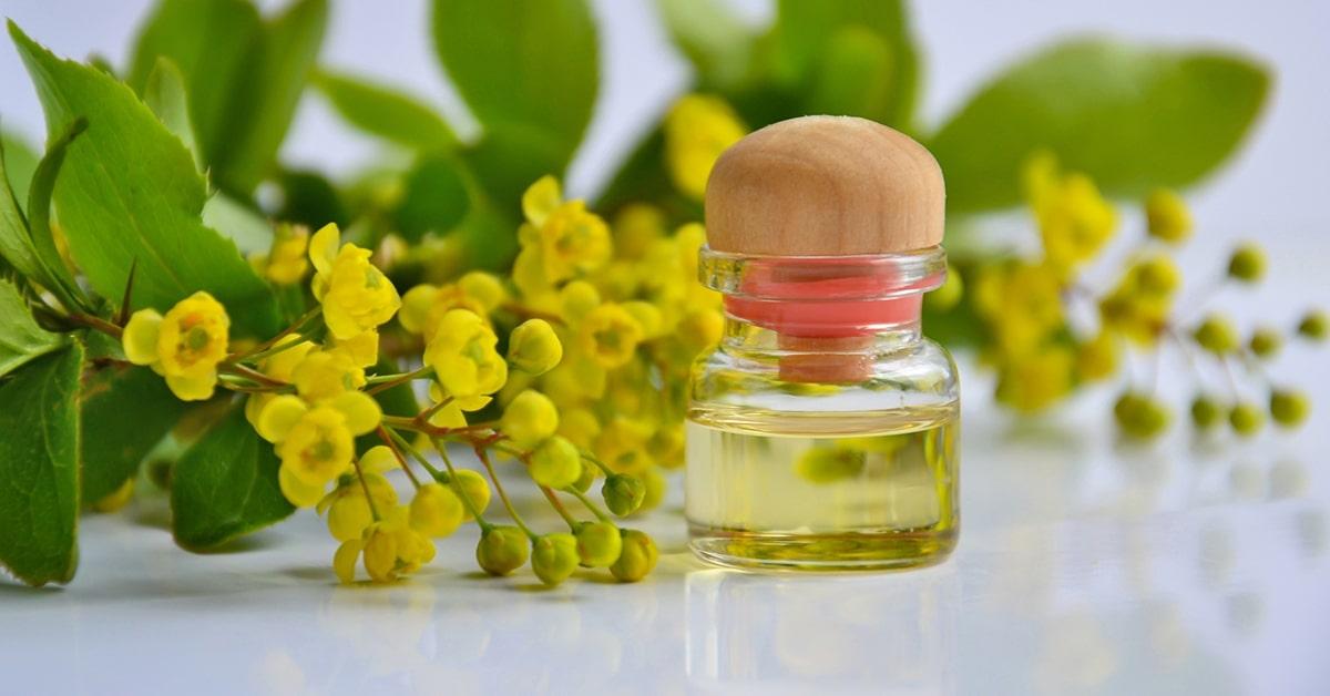 Sự khác nhau giữa hương liệu tự nhiên và hương liệu tổng hợp